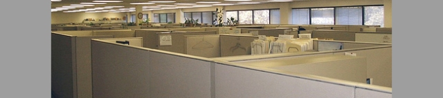 Synergon Office RPG cubicles